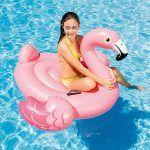 flotador flamenco